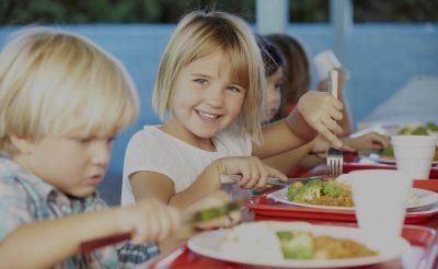 prehrana eko ponudba za javne ustanove šole vrtci
