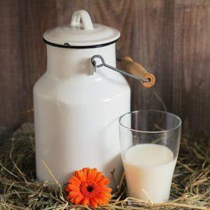 mleko, odkup mleka, kupec mleka, kupci mleka