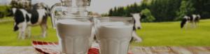 natečaj Mlečna kraljica 2020, Mlekarna Celeia, Zelene doline, mleko, kraljica